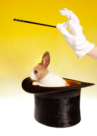 bunnie: Magicians hand and magic wand with rabbit in a top hat Stock Photo