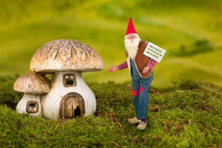Real life garden gnome pointing at his toadstool house photo
