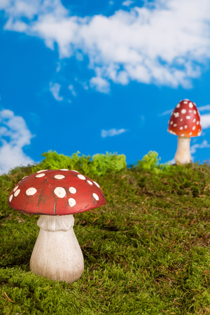 Fairytale background with agaric toadstools and moss photo