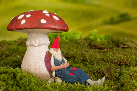gnome: Sleepy garden gnome lying under a fairy tale toadstool