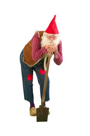 garden gnome: Senior garden gnome with beard and shovel Stock Photo