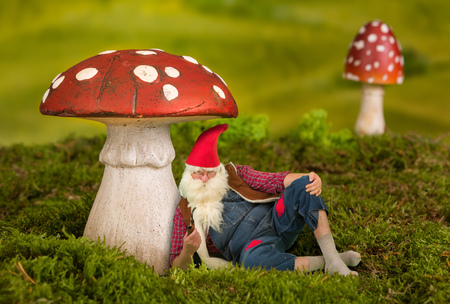 fairy toadstool: Lazy garden gnome sitting under a toadstool