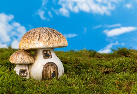 gnomos: Seta de cuento de hadas de la reproducción como una casa gnome