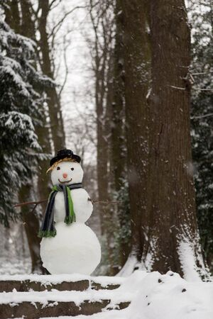 carrot tree: Snowman at the entrance to the park saying welcome Stock Photo
