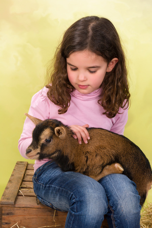 baby goat: Little adorable girl hugging a newborn baby goat Stock Photo