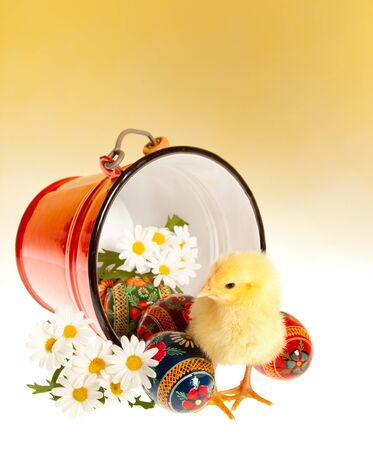 ukranian: Ukranian traditional easter eggs and yellow chick Stock Photo