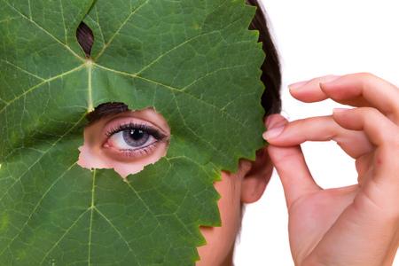 sneaky: Green tree leaf with a female eye peeping through