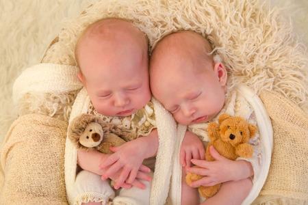 identical: Adorable newborn identical twin baby girls sleeping in a soft basket