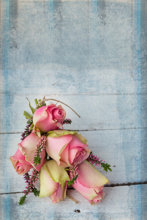 craquelure: Pastel pink roses as a still life on a grunge textured wooden table