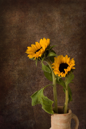 dark backgrounds: Painterly still life with a vase of sunflowers and grunge background Stock Photo