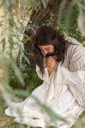 personas orando: Jesús en agonía orando en el huerto de los olivos antes de su crucifixión Foto de archivo