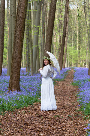 bluebells: Victorian woman in white dress in a springtime bluebells forest Stock Photo