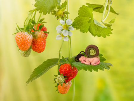 Cute newborn baby in snail outfit sleeping on a strawberry plant Stock Photo
