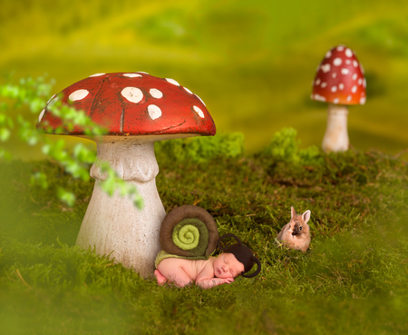Baby sleeping in fairytale background with toadstools