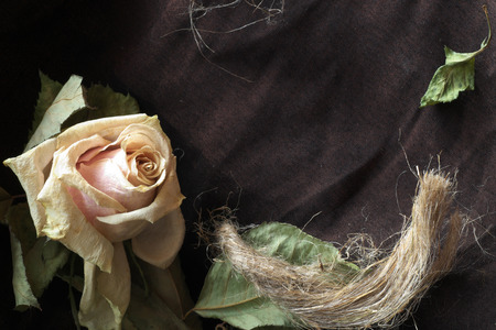 A dry rose is decorated by a hemp rope.