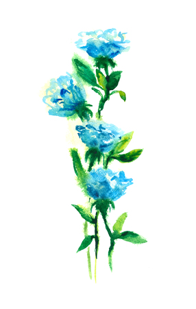 blue roses: watercolor drawing blue roses, hand drawn design Illustration