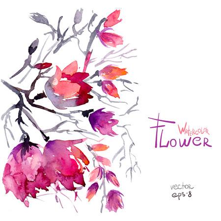 flor de sakura: Flores de primavera de la acuarela de color rosa sakura �rbol de la flor Vectores