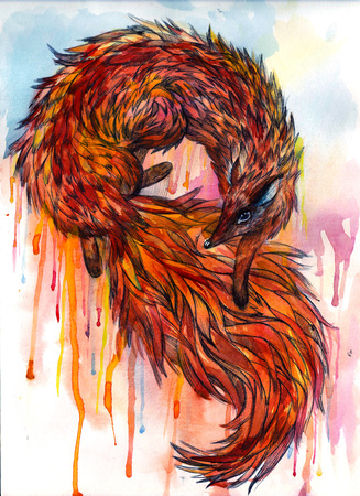 scratchboard: Watercolor fox tail and fur wild dog