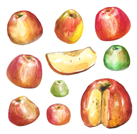 half apple: Apples painted with watercolors on white paper. Red apple, green apple, leaf, half an apple.