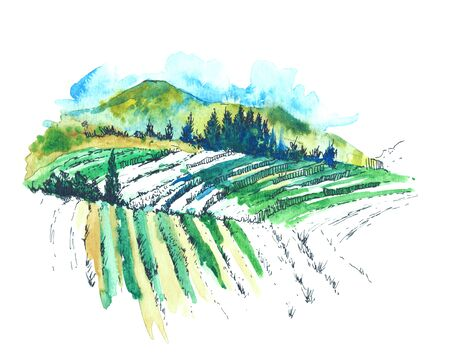 Watercolor landscape with hills, forest and field in green tones. Clear sunny day. Menu design