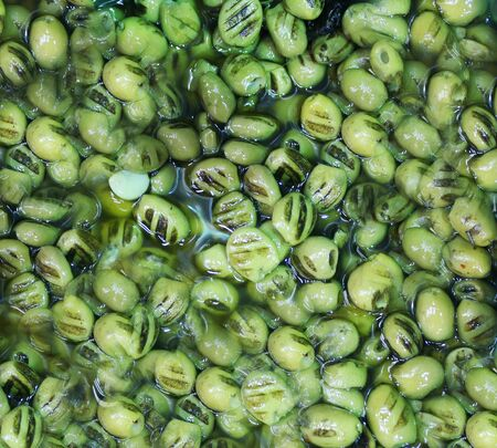 olives, picking from plants during harvesting, green, beating to obtain extra virgin oil. 写真素材