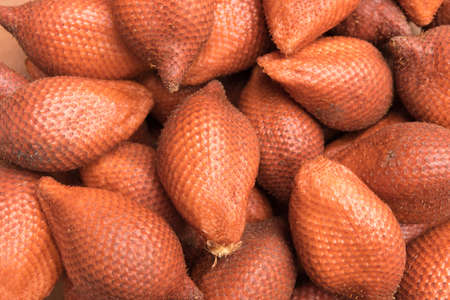 salak: salak fruits Stock Photo