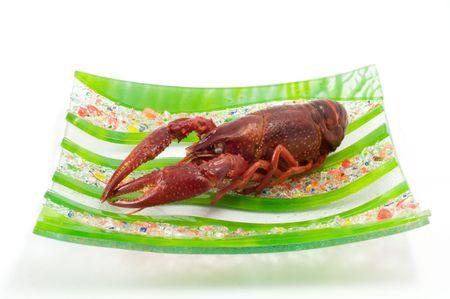 Shot of a crawfish isolated on white background photo