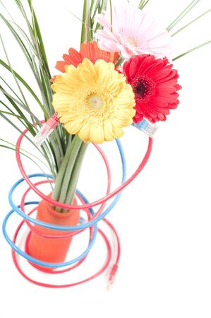 bloomy: Conceptual shot of flowers and wires isolated on white