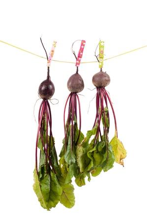 Hanging beet photo