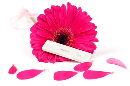 Positive pregnancy test and gerbera photo
