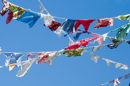 A group of colored shirts on a clothesline photo