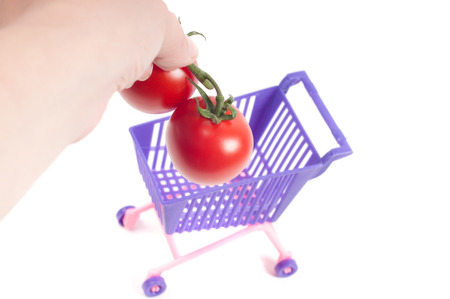 shoppingcart: Hands putting tomatoes into shopping-cart, isolated on white