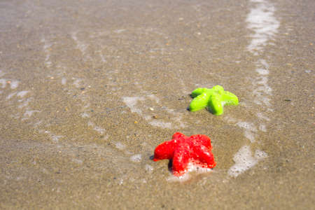 sand mold: Two starfish-shaped molds on the sand