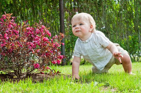 Baby boy sitting near pink bush photo