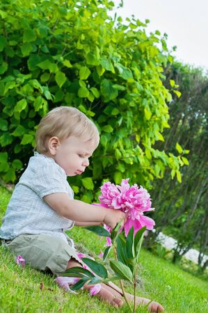 Small baby boy holding pink flower in his hand photo