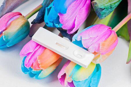 pregnancy test: Tulipanes multicolores y prueba de embarazo