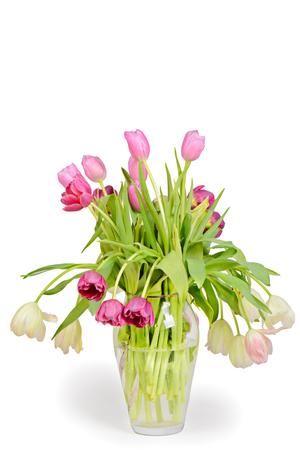matherday: Tulips bouquet in vase isolated on white background Stock Photo