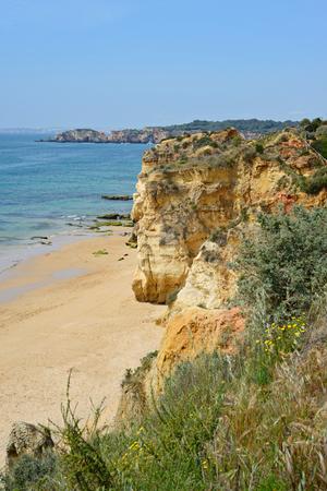 rocha: A view from top to the Praia da Rocha, Algarve region, Portugal