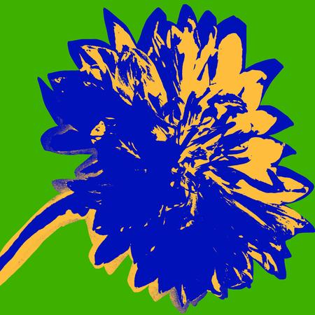 Cornflower picture Фото со стока