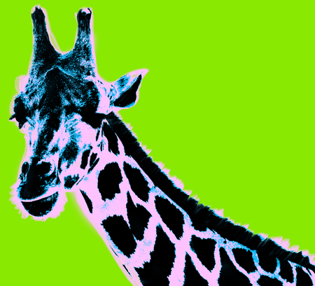 Picture with giraffe over green background Stockfoto
