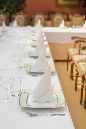 Long served table with plates, glasses, napkins and chairs