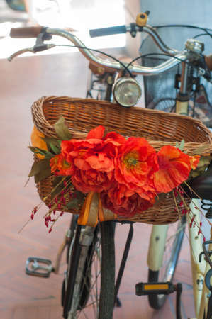 Bicycle with flowers in Spain