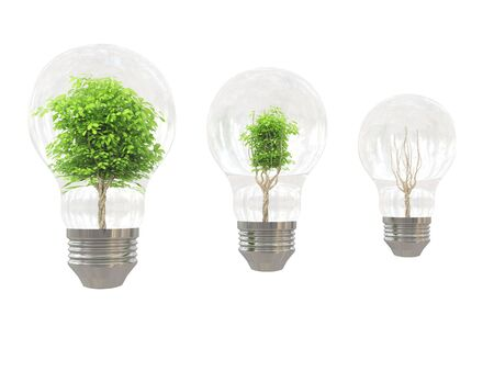 Tree in bulb on white background Stock Photo