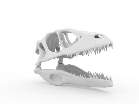 Dinosaur head isolated on white background