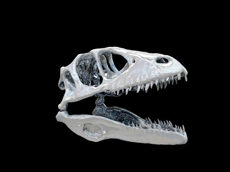 Dinosaur head isolated on black background photo