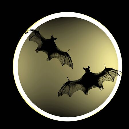 Bat against the backdrop of the moon photo