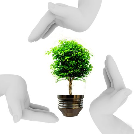 Hands are made in the form of a triangle and protect tree in bulb Stock Photo - 9622713