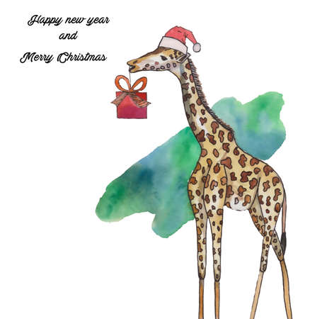 Christmas giraffe with a hat and a gift. Watercolor illustration