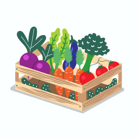 Wooden box with useful vegetables. Local production. Environmentally friendly products. Farming. Isolated editable vector