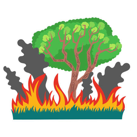 Forest and grass in fire and smoke. An ecological disaster in Australia forest fires. Vector isolated illustration on white background Иллюстрация
